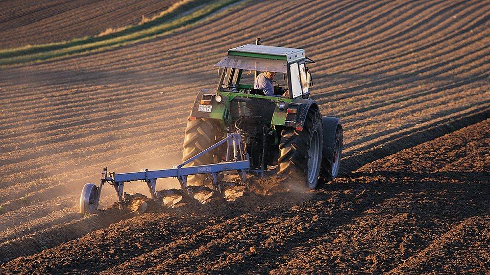 Betriebshaftpflicht für Landwirte