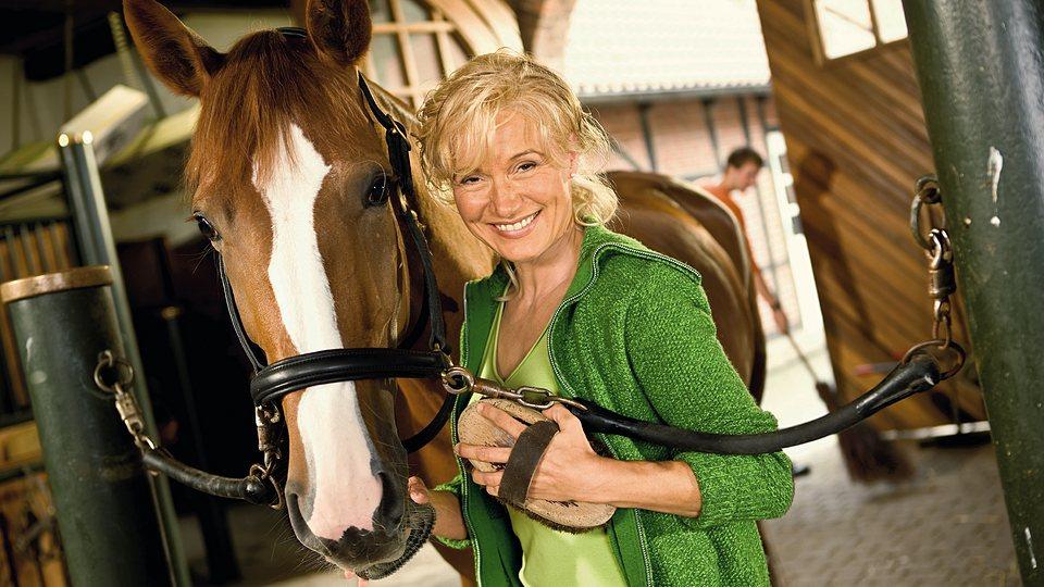 Haftpflichtversicherung für Pferd und Reiter