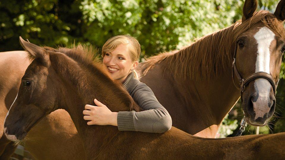 Die Pferdeversicherung der LVM ist eine Lebensversicherung für Pferde.