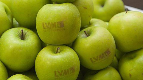 LVM als Versicherer: 120 Jahre Geschichte der LVM Versicherung